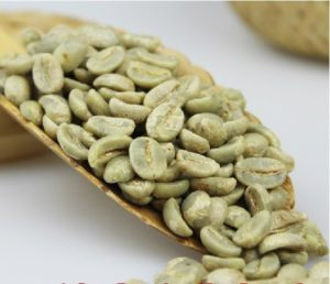 Typica Arabica Coffee Beans